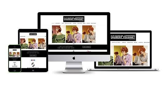 site Internet Laurent Voisinet